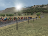 A calm day for the peleton